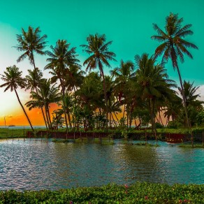 Affordable Experience in Kerala
